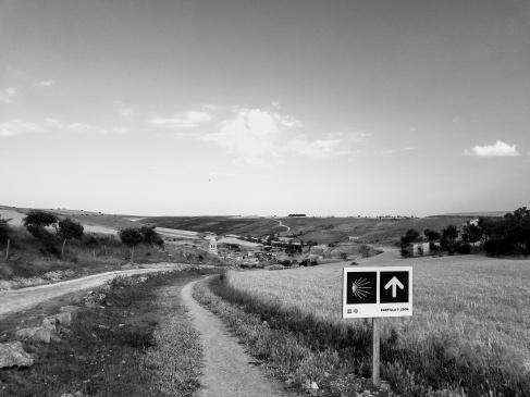 Camino Castilla y Leon