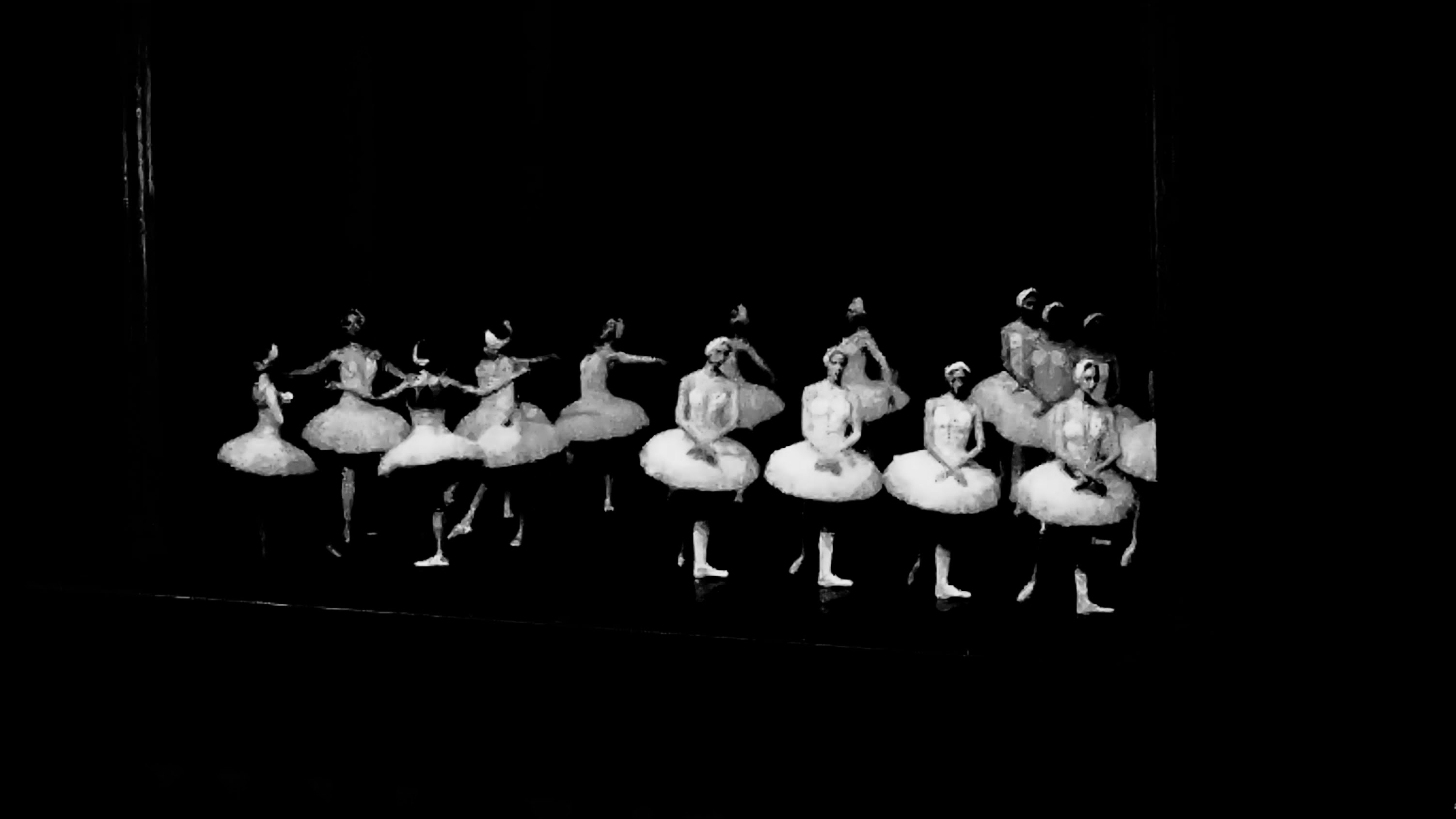 Cologne, Swan Lake